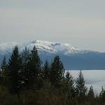 Hull Mountain with Lake Pillsbury buried in fog.