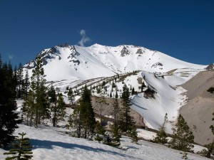 Mt. Lassen's north side from treeline.