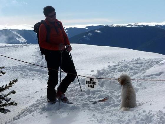 Bella at ski area boundry 1