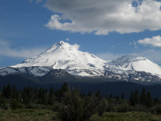 Mt. Shasta is always good this time of year (June). In 2015 it looked worse in April.  Photo by Jibmaster.